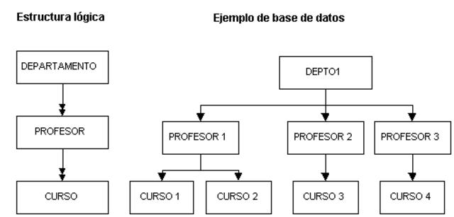 IMS de IBM   Estructura de datos jerárquica