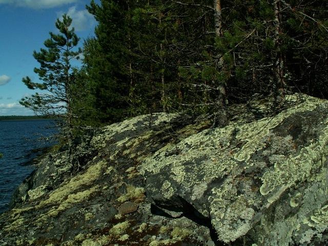 Северный берег Совдозера