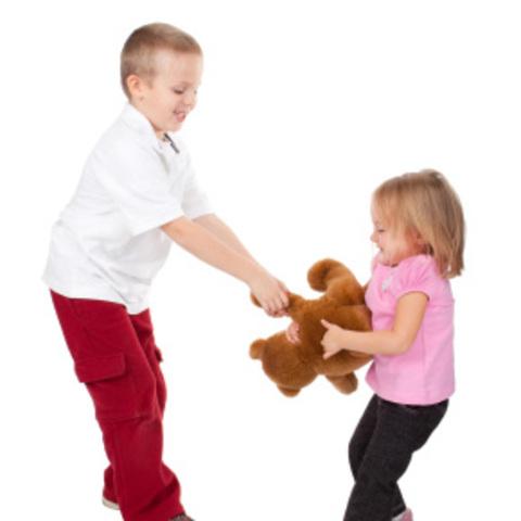 Early Childhood: Biosocial: Brain Development