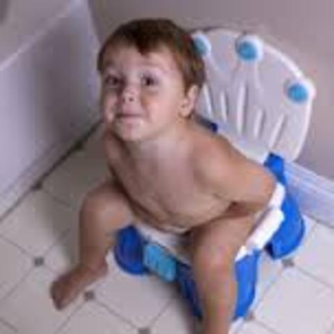 Toilet Training Begins