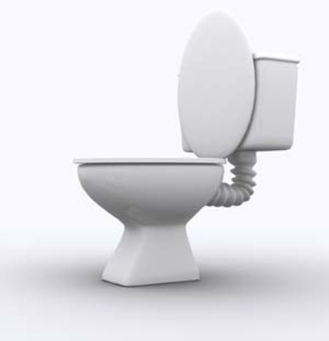 First flush toilet is invented.
