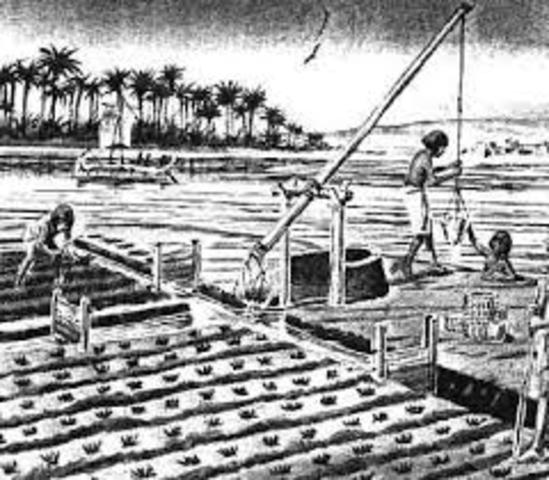 Irrigation 3000 BC