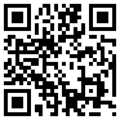 QR Code (Flash Code)