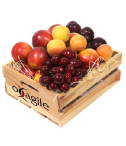 Yield Season at Oxagile