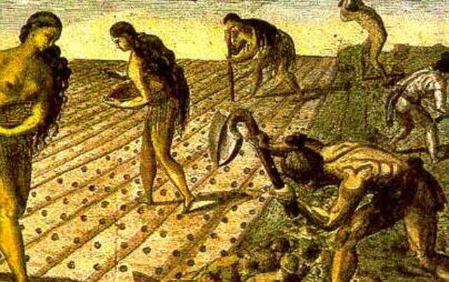 1542- nuevas leyes de indias