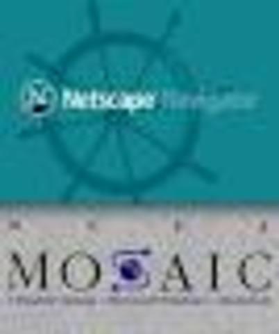 Mosaic net Scape