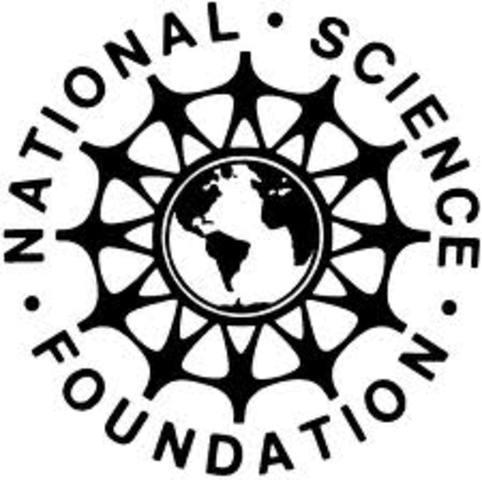 Historia del Internet.Crecimiento (NSF)