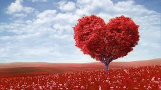 Psychosocial: Romance and Relationship