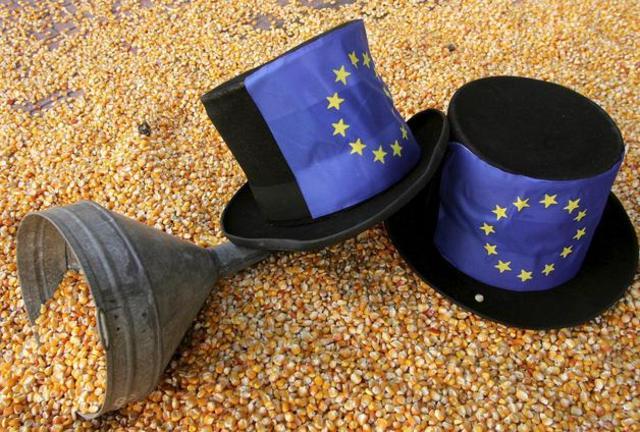 Política Agrícola Común(español)