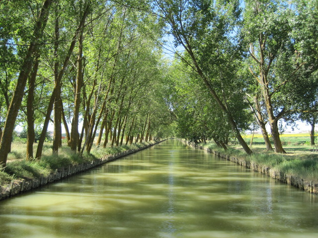 The Canal of Castilla