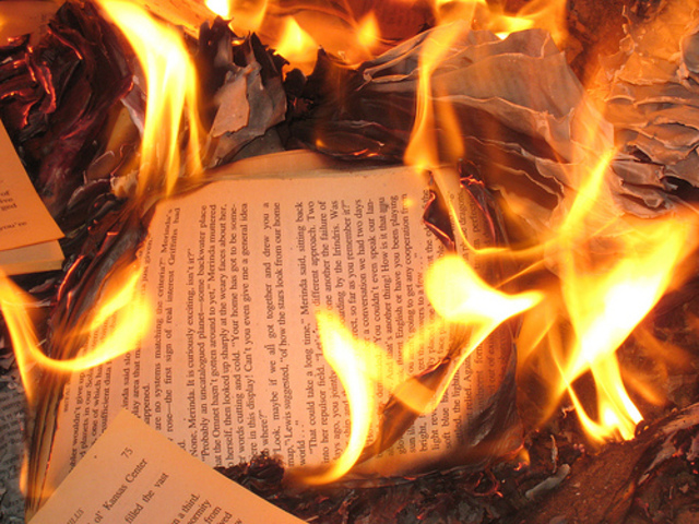 woman, fire, and a book