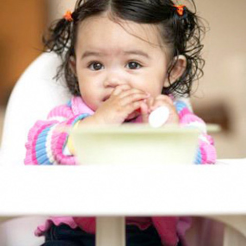 cognitive development at 17 months