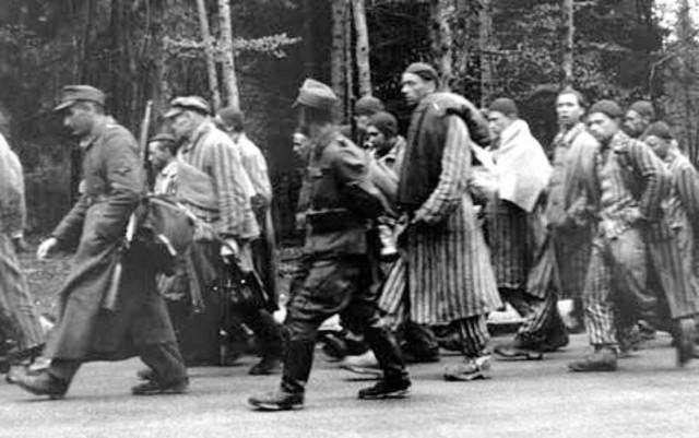 Auschwitz Evacuated