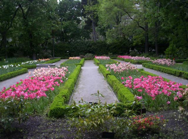The Royal Botanical Garden of Madrid