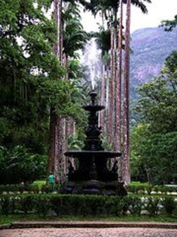 Criação do Jardim Botânico, RJ