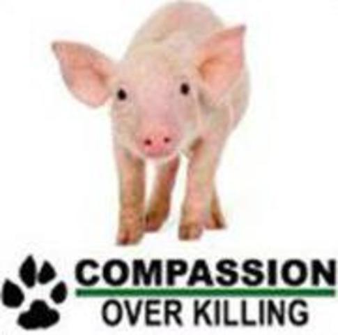 Compassion Over Killing is founded.