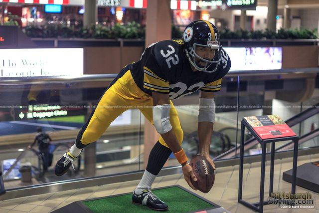 """""""Immaculate Reception"""""""