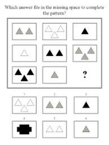 Stanford-Binet Intelligence Test