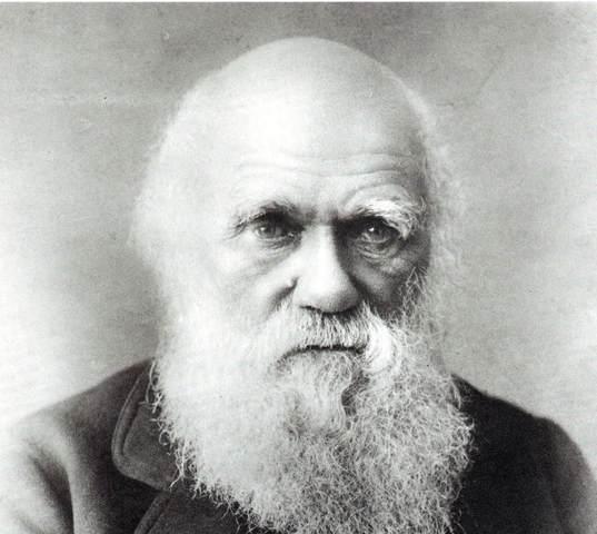 Charles Darwin- On the Origin of Species