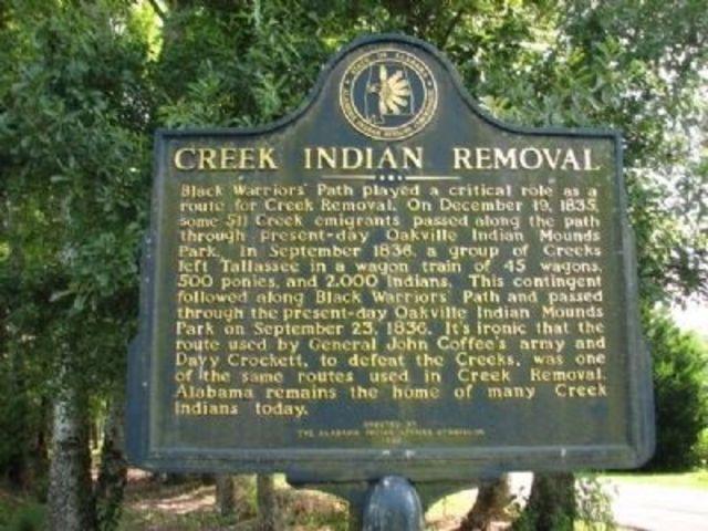 creek removal