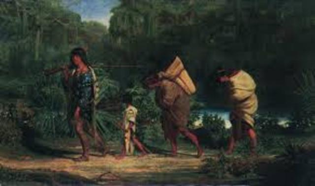 choctaw and chickasaw removal