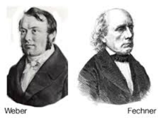 Webbe y Fechner