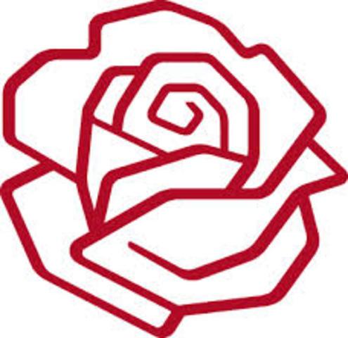 Socialdemokratiet, det 3. parti