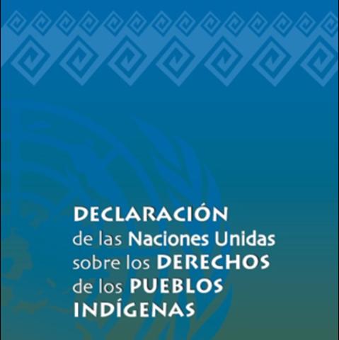 Declaración universal sobre los pueblos indígenas