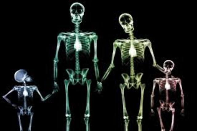 Los rayos X