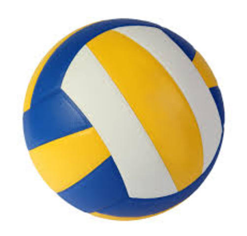 Make the Volleyball Team.