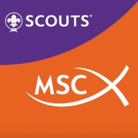 Creación de MSC