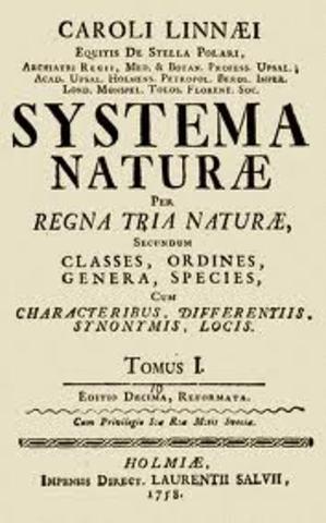Clasificación de los seres vivos (Linneo)