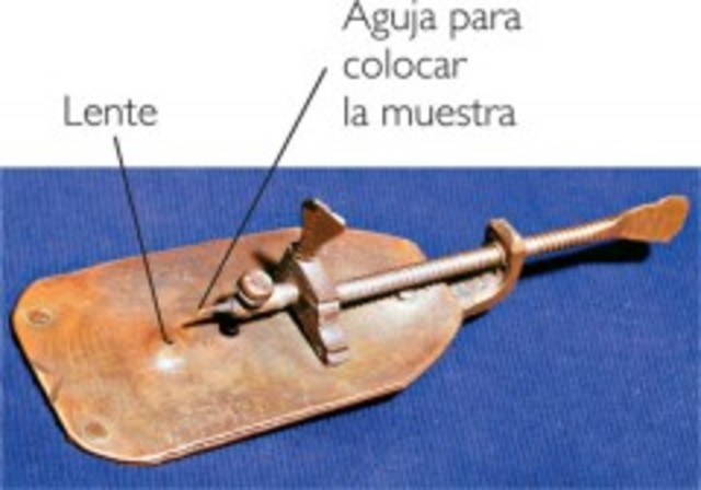 Microscopio simple