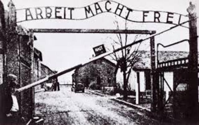They arrive in Auschwitz