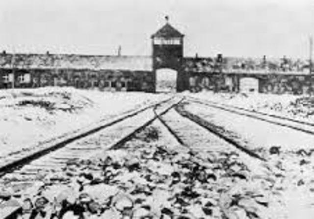 They arrive in Birkenau