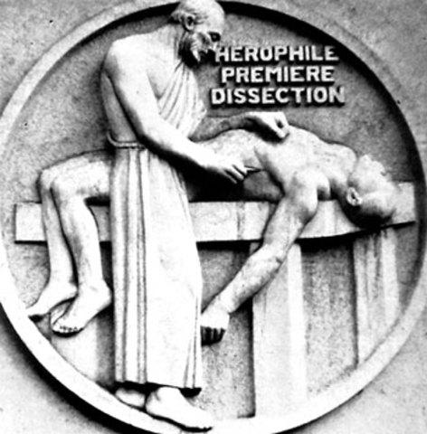 Herophilus c. 300 BCE