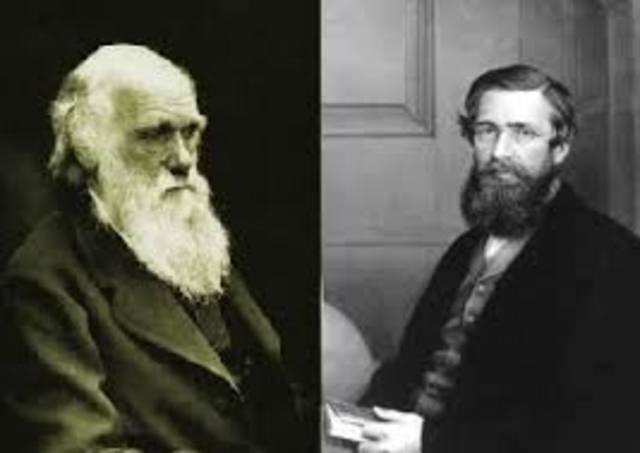Wallace and Darwin