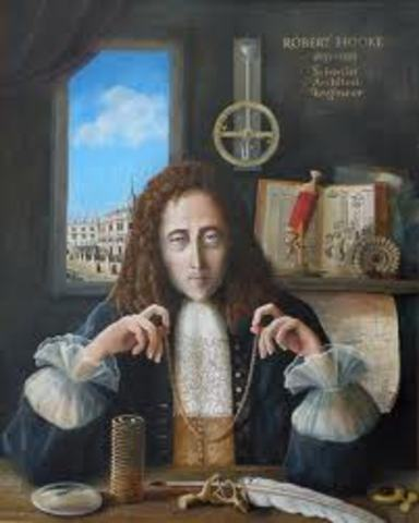 Robert Hook