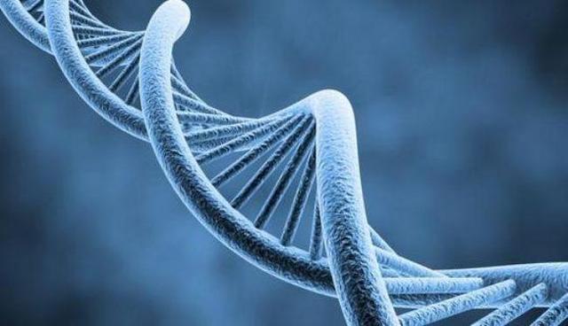 """""""ADN"""" 3.800 MILLONES DE AÑOS"""