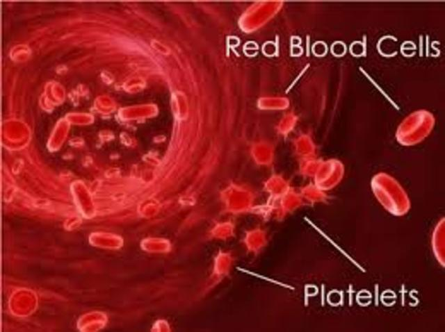 Platelets are discovered