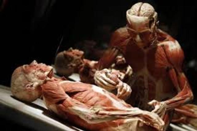 Cadaver Blood