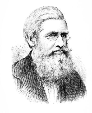 ALfred Russel wallacero (de1823 – Broadstone, Inglaterra, 7 de noviembre de 1913),