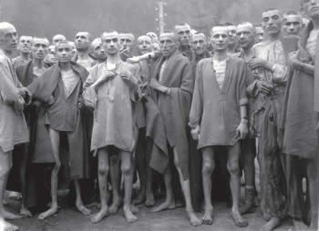 Boicote aos Judeus