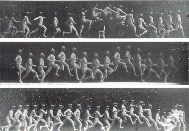 Estudio movimientos humanos