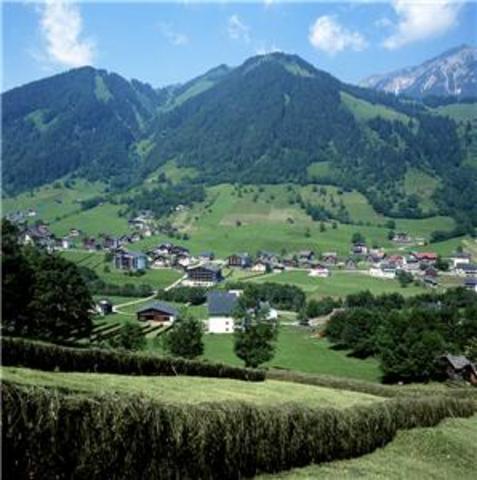 Greman troops march into austria