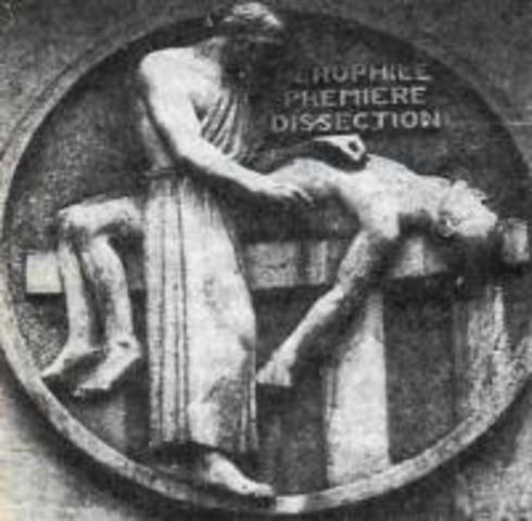325 — 280 гг. до н.э. Герофил