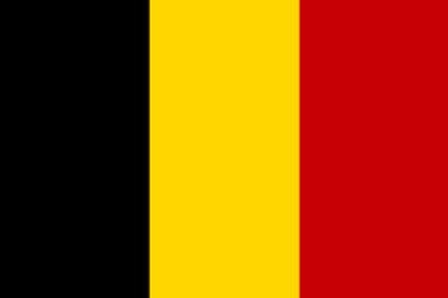 Desarrollo de la Orientación en Belgica
