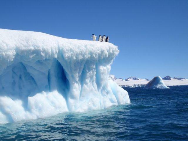 Antartica Treaty signed