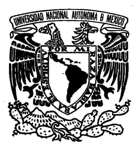 La UNAM funda el Doctorado en Orientación Profesional.