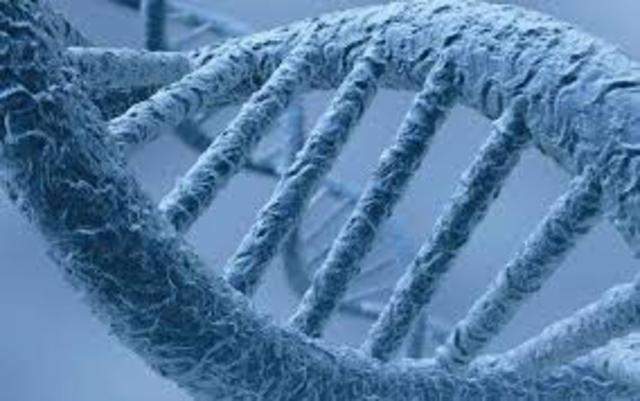 Secuenciación completa del genoma Humano